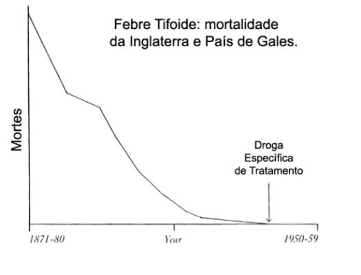 febre tifoide grafico