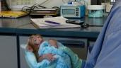 Privação Materna