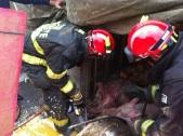 Bombeiros ajudaram no resgate.