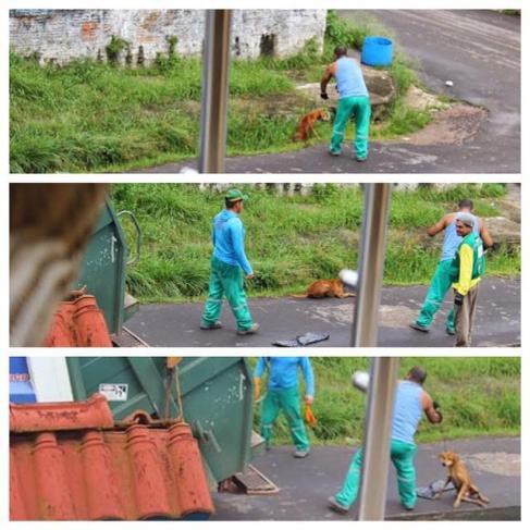 No dia 21 de junho de 2015 um cão de rua foi dolosamente atropelado e atirado pra morrer em um compactador de lixo; fato ocorreu em Presidente Figueiredo (AM).