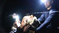 Ativistas fizeram operação de resgate (Foto: DxE)
