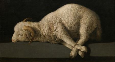 Sacrifício de animais
