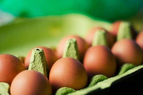 ovos imagem