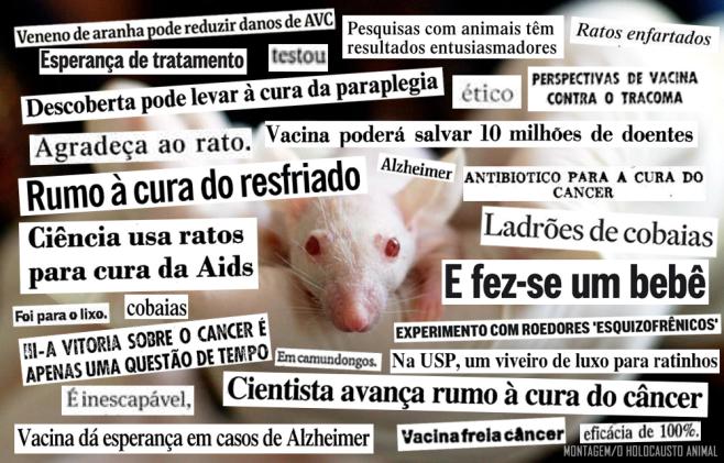 capa reportagem testes em animais