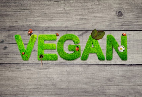 vegan arte